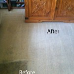 Bedroom-Carpet-Cleaning-Berkeley