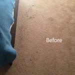 Bedroom-Carpet-Cleaning-Berkeley-A