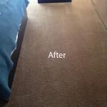 Bedroom-Carpet-Cleaning-Berkeley-B