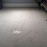 Bedroom-Wall-to-Wall-Carpet-Cleaning-Berkeley-B