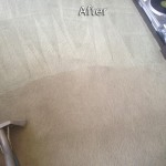 Berkeley-Carpet-Cleaning-Company