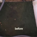 Berkeley-before-carpet