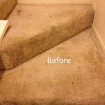 Stairs-Carpet-Cleaning-Berkeley-A
