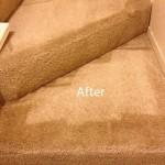 Stairs-Carpet-Cleaning-Berkeley-B